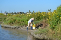 Keep Aransas County Beautiful 35S Inter-tidal Cleanup